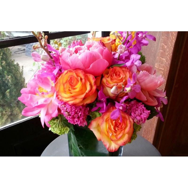 Vivid Pink & Orange