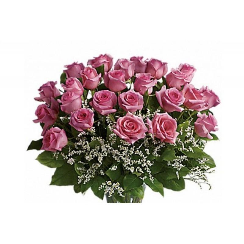 Pink Rose Burst